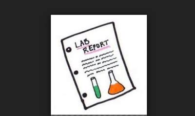 Writing A Good Lab Report - Organic Chemistry Laboratory